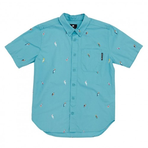 Camisa DC Hepscott Boy Maui Blue